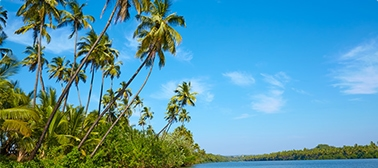 Summer Honeymoon Places India Kerala
