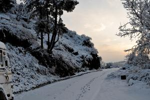 Summer Honeymoon Places India Shimla